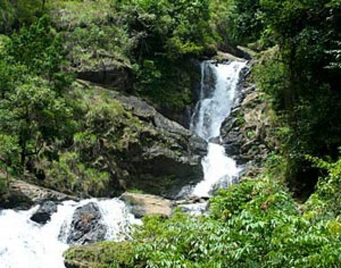 Experiencing The Monsoons in Coorg